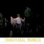 Transversal Madness in Cuarnevaca